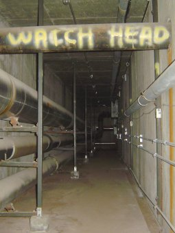 Missouri State University Tunnels Underground Ozarks